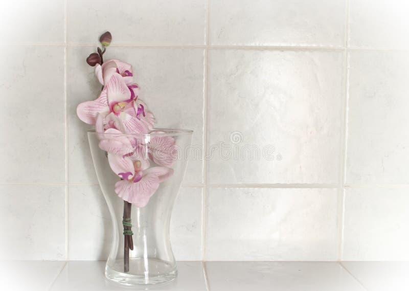 Orquídeas plásticas en el vidrio con el fondo blanco fotos de archivo