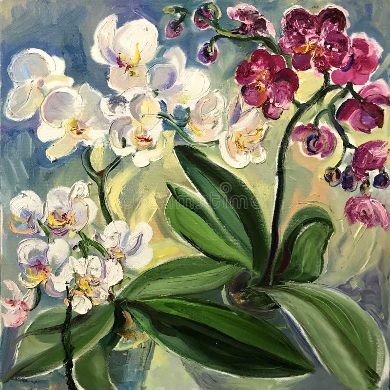 Orquídeas rosadas y blancas en potes stock de ilustración
