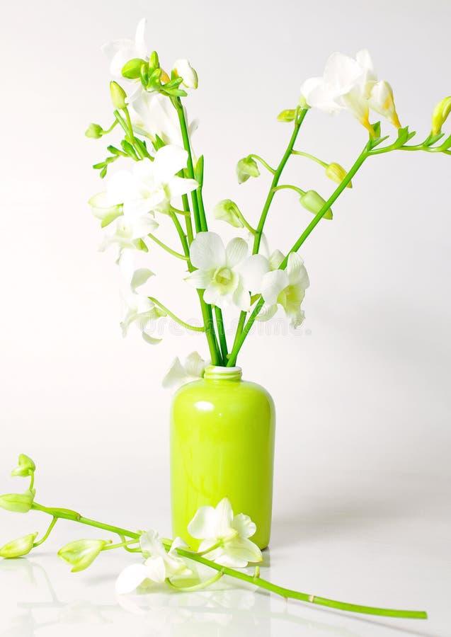 Orquídeas y freesia foto de archivo