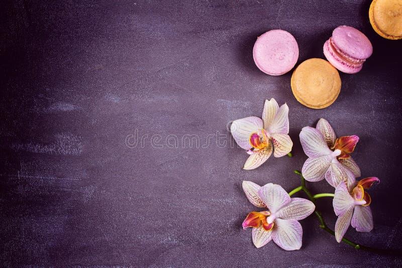 Orquídeas y macaron o macarrones de la torta en fondo gris desde arriba imagenes de archivo