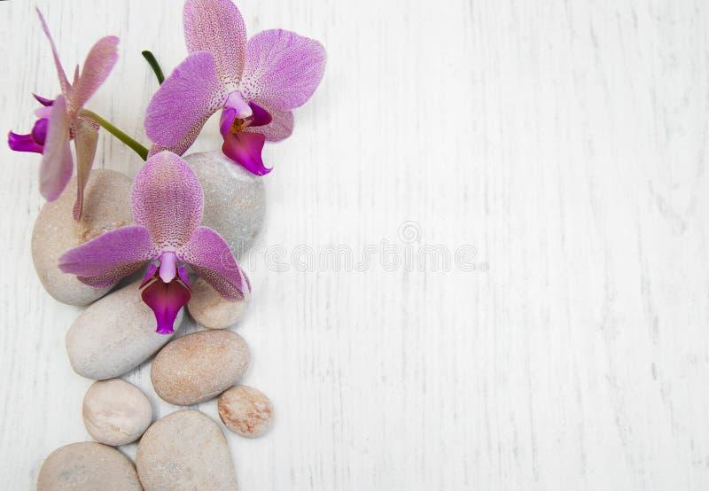 Orquídeas y piedras del masaje imagen de archivo