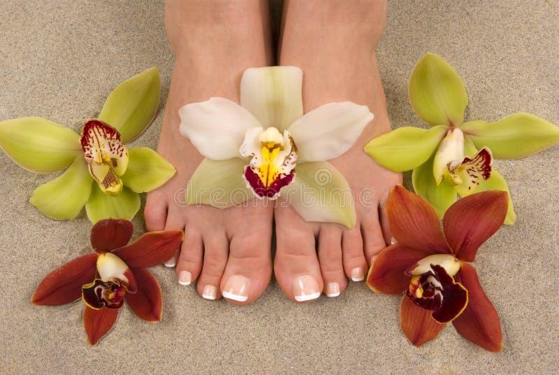 Orquídeas y pies imagenes de archivo