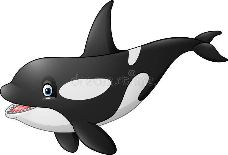 Orque mignonne sur le fond blanc illustration de vecteur