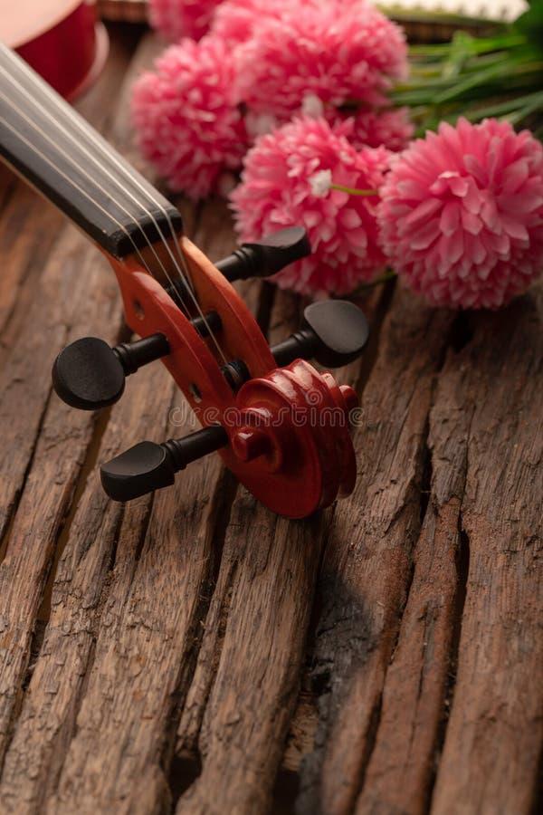 Orquesta del cabezal del violín del tiro del primer instrumental sobre la profundidad baja del foco selecto de madera del fondo d imagenes de archivo