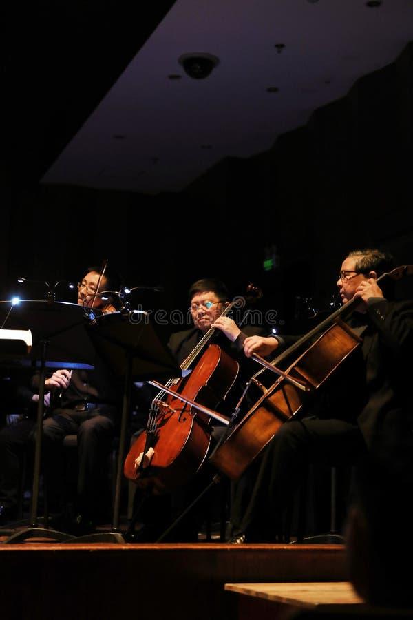 Orquesta sinfónica fotografía de archivo libre de regalías