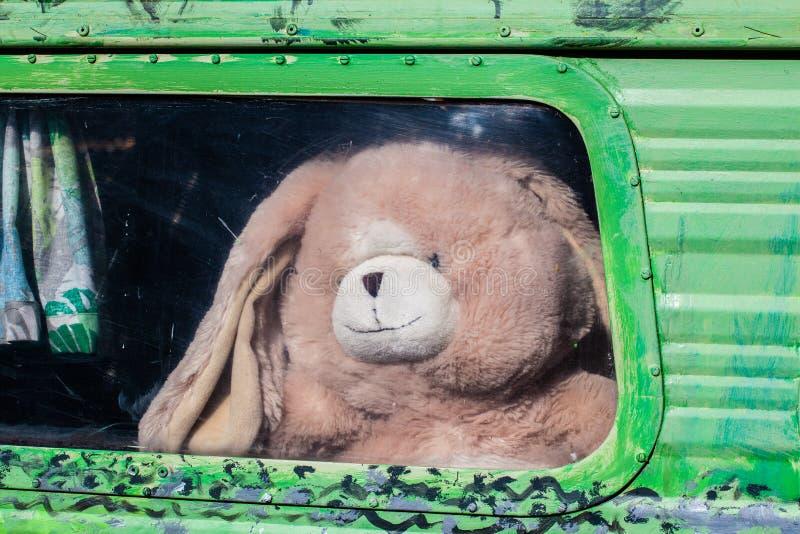 Orsacchiotto beige che guarda dalla retro finestra del caravan immagine stock