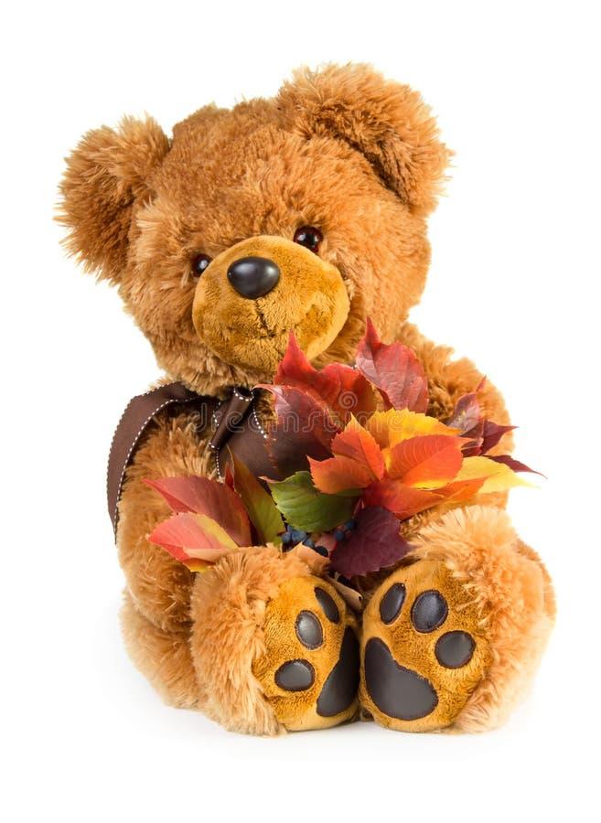 Orsacchiotto grazioso del giocattolo con il mazzo delle foglie di autunno immagini stock libere da diritti