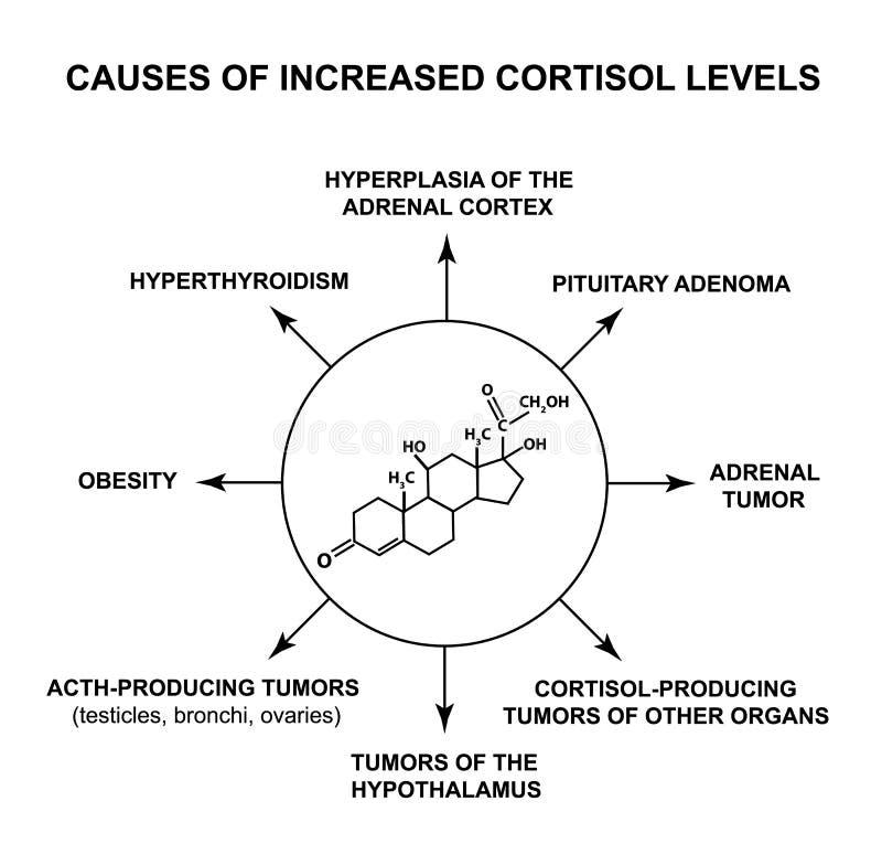 Orsaker av ökande cortisolnivåer Cortisolen för spänningshormonet är en kemisk molekylär formel Infographics vektor royaltyfri illustrationer