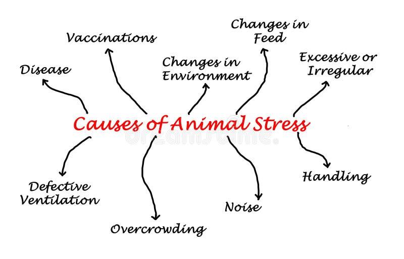 Orsaker av den djura spänningen royaltyfri illustrationer