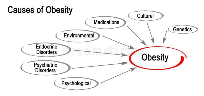 Orsaker av fetma stock illustrationer