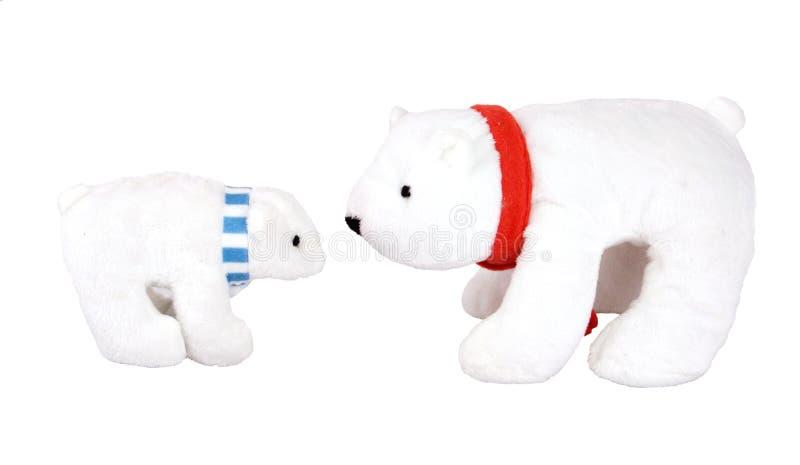 Orsi polari immagini stock
