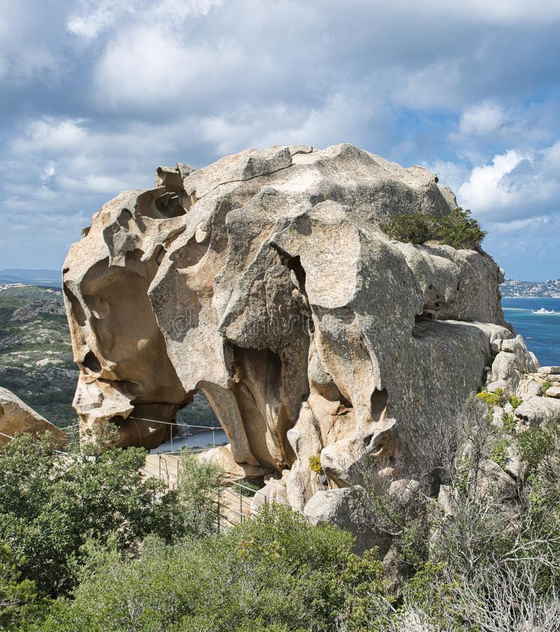 ` Orso del capo d in Sardegna, Italia fotografie stock libere da diritti