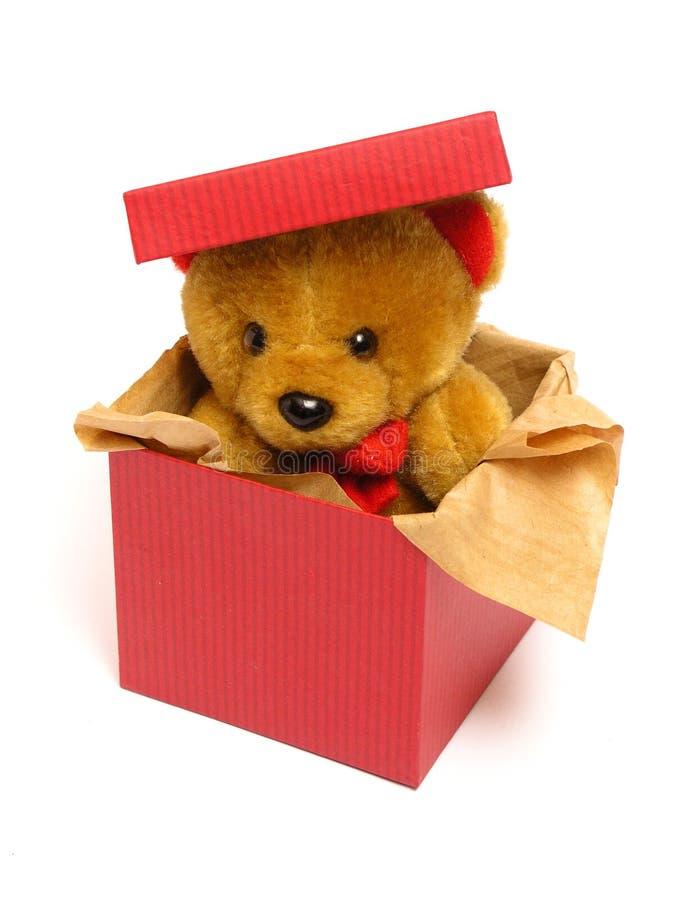 Orso dell'orsacchiotto all'interno di una casella immagine stock