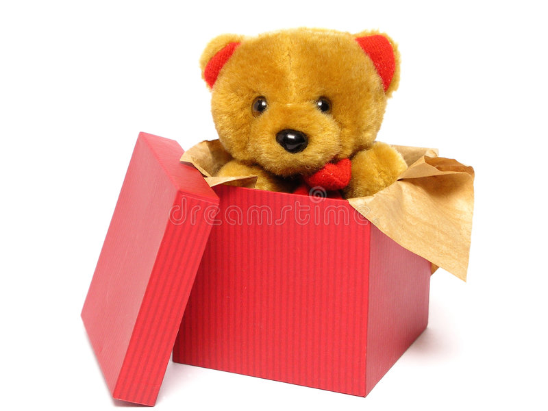 Orso dell'orsacchiotto all'interno di una casella fotografia stock