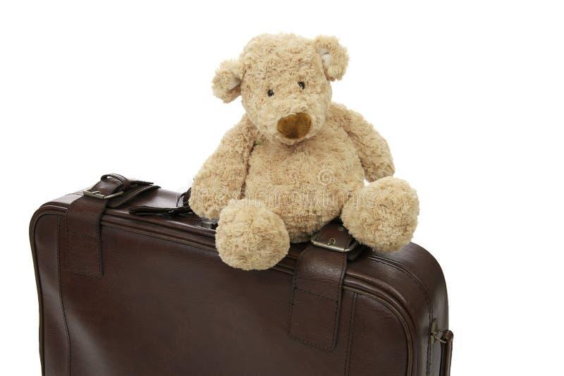 Orso dell'orsacchiotto con la valigia fotografie stock libere da diritti