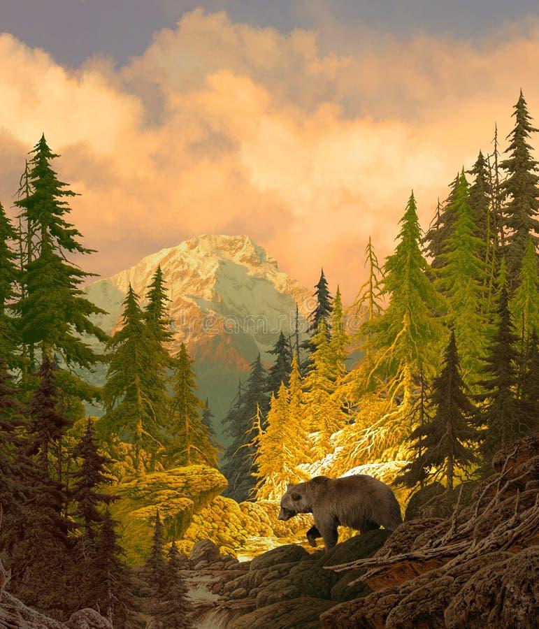 Orso dell'orso grigio nelle montagne rocciose fotografie stock