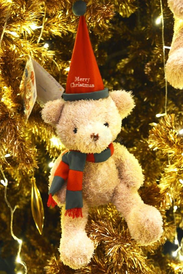 Orso di Buon Natale fotografie stock libere da diritti