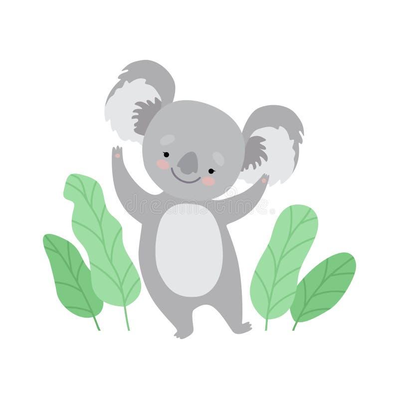 Orso di koala allegro sveglio che sta su due gambe, Grey Animal Character Vector Illustration divertente illustrazione vettoriale