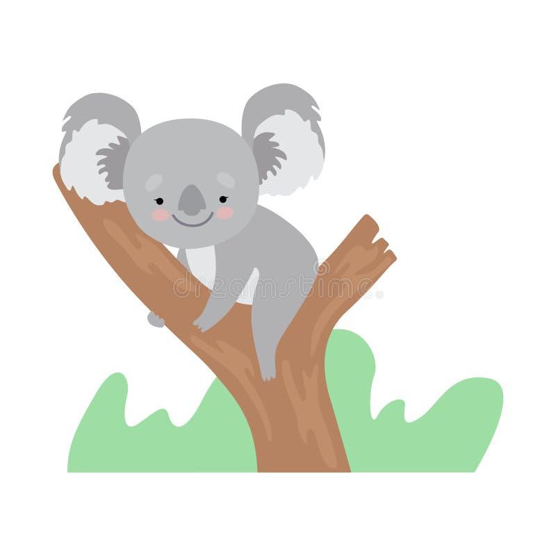 Orso di koala sveglio che si siede sul ramo di albero, Grey Animal Character Vector Illustration divertente illustrazione di stock