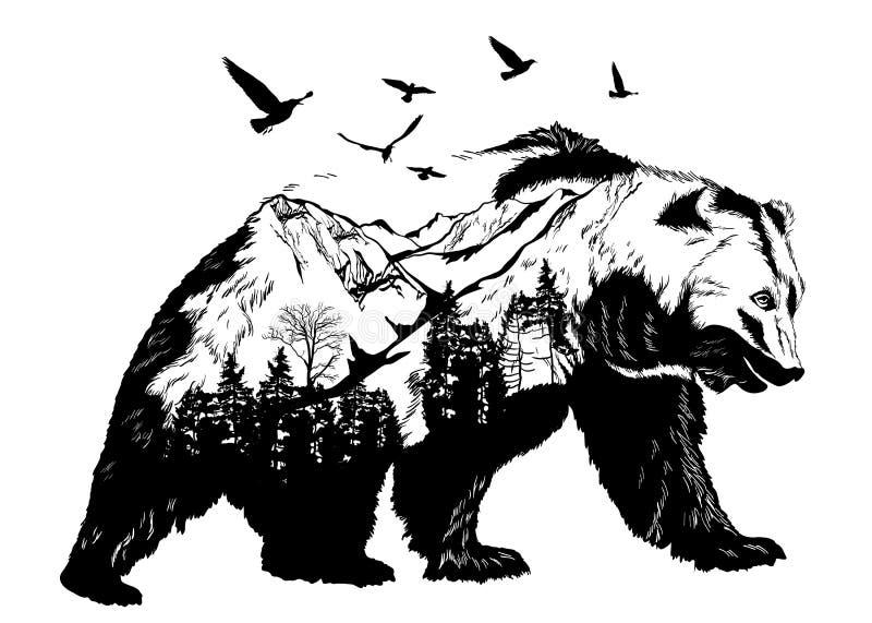 Orso disegnato a mano, concetto della fauna selvatica illustrazione di stock