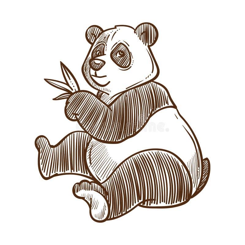Orso panda con foglie di bambù schizzo isolato, animale cinese royalty illustrazione gratis