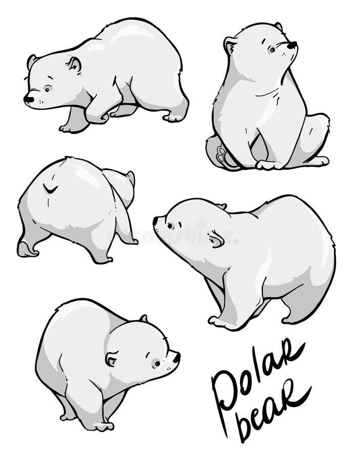 Orso polare sveglio Progettazione disegnata a mano piana di vettore Illustrazione del fumetto illustrazione di stock