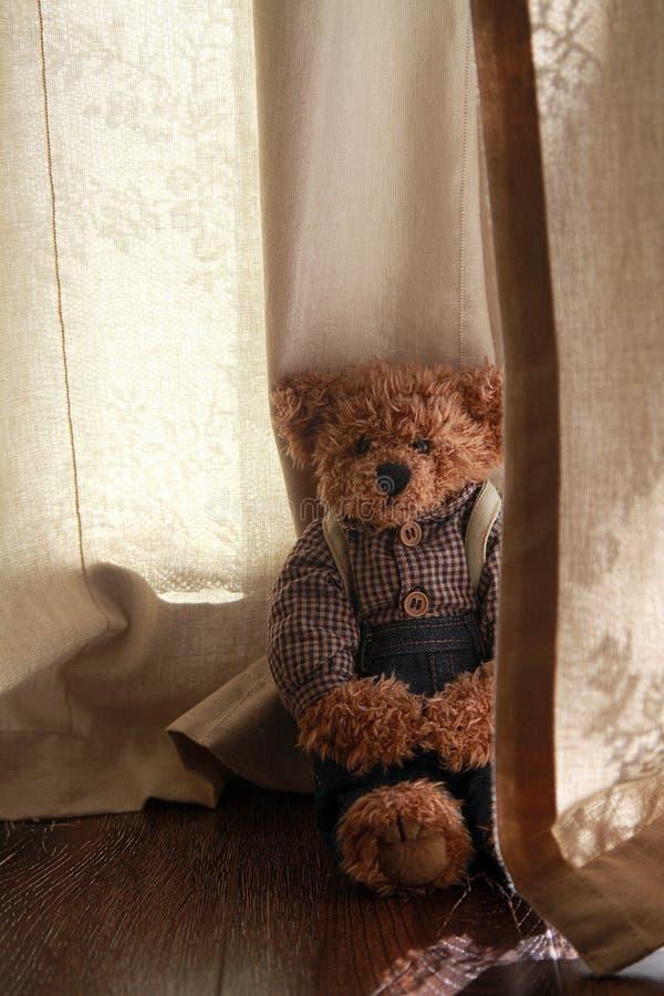 Orso sveglio dell'orsacchiotto immagine stock