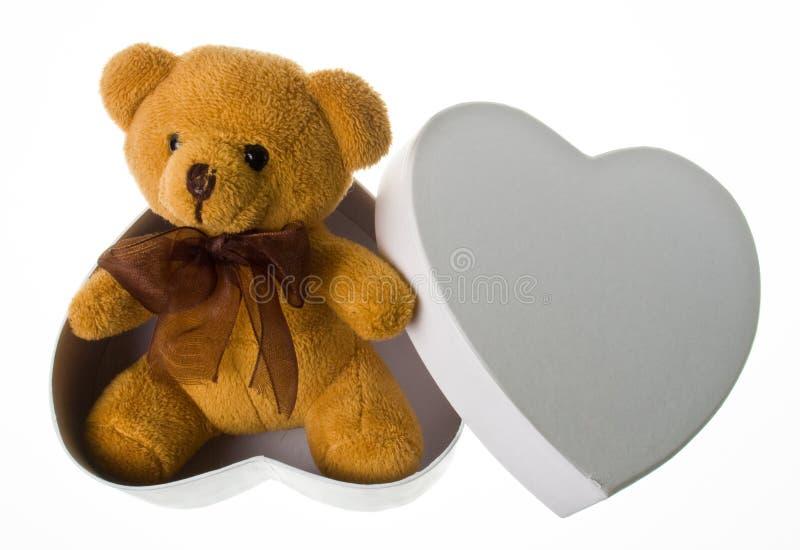 Orso sveglio nella casella del cuore fotografia stock