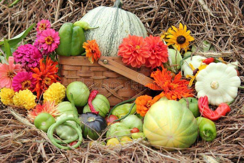 Ortaggi e fiori con il fieno come fondo fotografie stock libere da diritti
