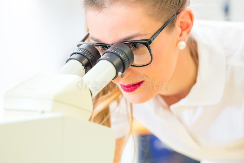 Orthodontist som arbetar med mikroskopet och molar royaltyfri fotografi