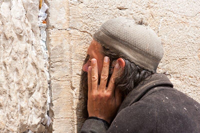 Orthodox Jewish Man prays at the western wall royalty free stock image
