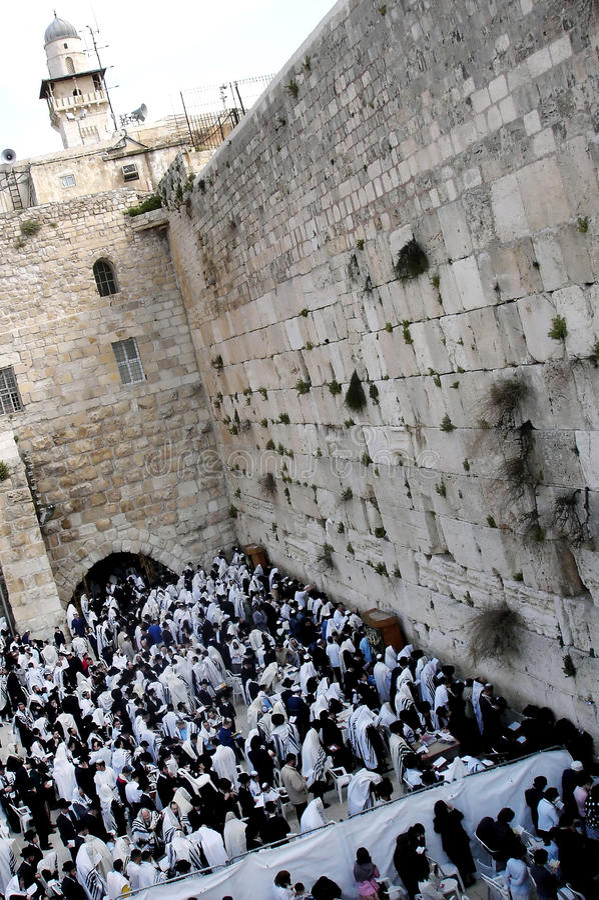 Download Orthodox Jewish Pray At Western Wall Editorial Photo - Image: 16967291
