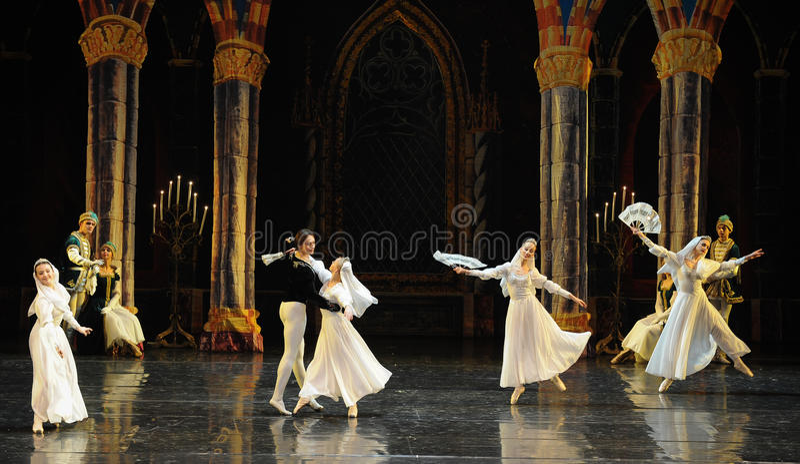 Orthodoxer Nonne-D SchwanSeeufer-ballett Swan See stockbild