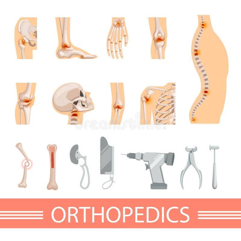 Orthopädische Ikonen Eingestellt Menschliches Skelett, Knochen Und ...