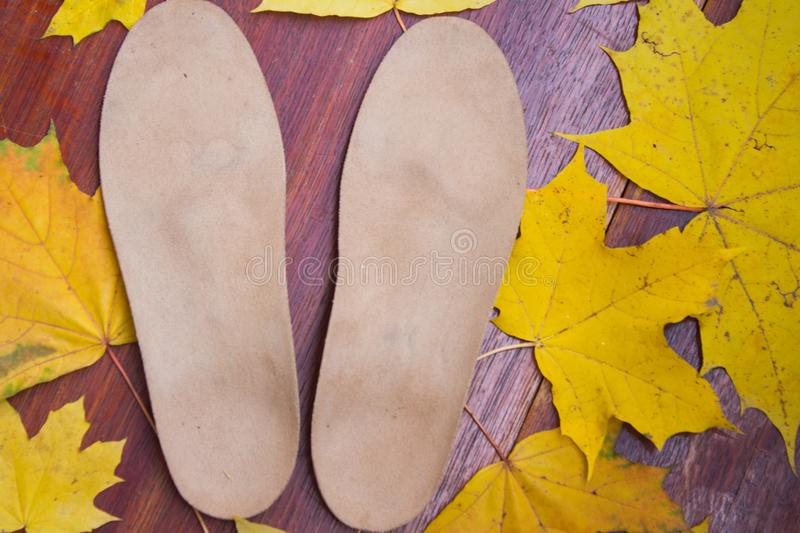 Orthopedic insoles. Autumnal background, maple leaves on a wooden board royalty free stock image