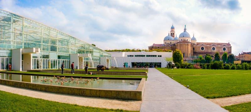 Orto Botanico di Padova ogród botaniczny Padua Unesco miejsce zdjęcie royalty free