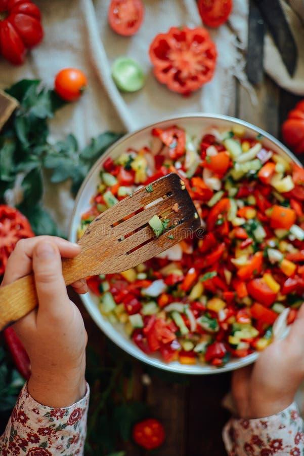 Orto con le piante dei pomodori rossi Pomodori maturi sulla a immagini stock