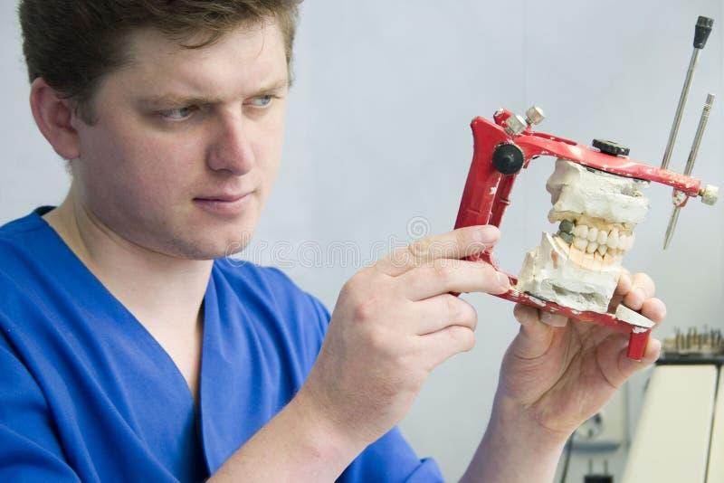 ortodonta pracy zdjęcia stock