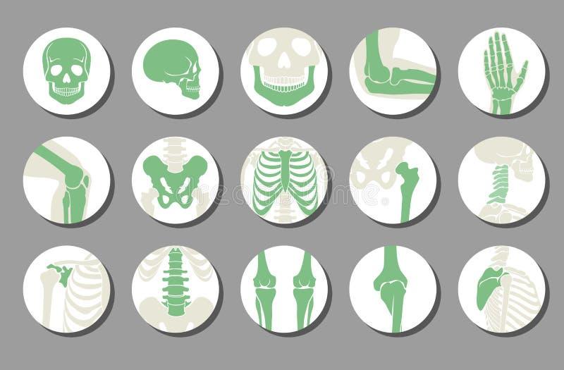 Ortopediska och inbindningsvektorsymboler vektor illustrationer