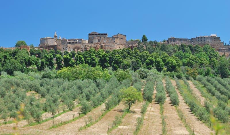 Orvieto, Umbria, Włochy zdjęcia royalty free