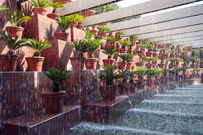 Oryginalna projekta kapinosa fontanna obraz royalty free