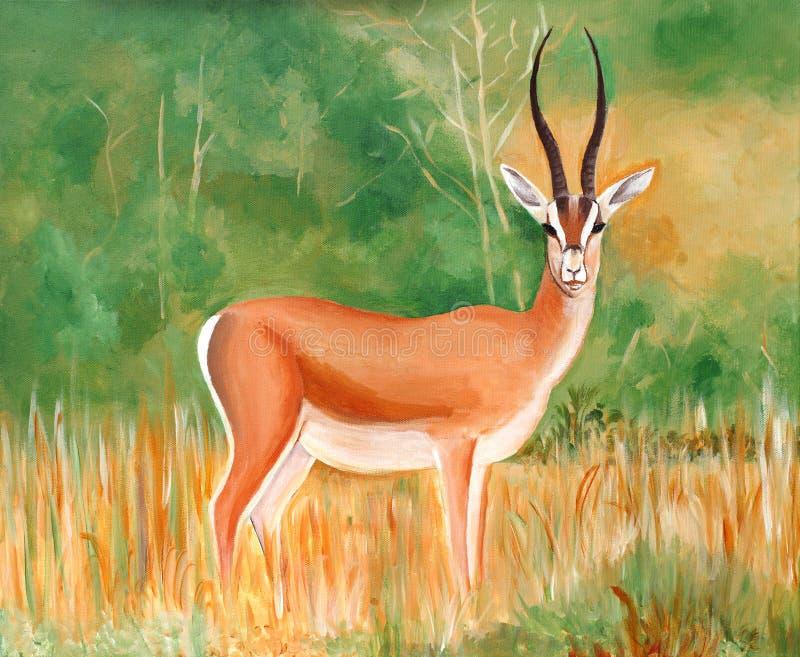 Oryginalny obraz samiec Thomson piękna gazela ilustracja wektor
