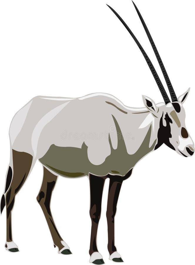 Oryx dell'Arabo di serie dell'antilope royalty illustrazione gratis