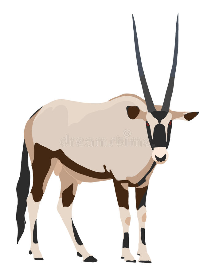 Free Oryx From Side, Looking Towards, Illustration Stock Photography - 84606392