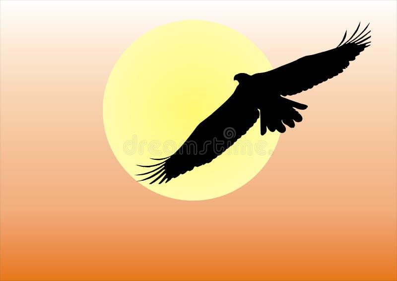 orzeł słońca royalty ilustracja