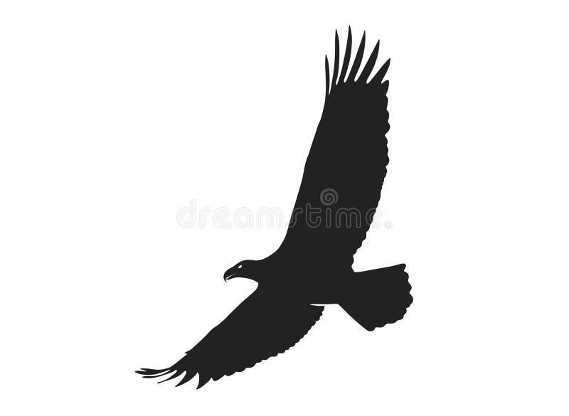 Orzeł w locie o rozpiętości skrzydeł izolowany obraz sylwetki wektorowej royalty ilustracja