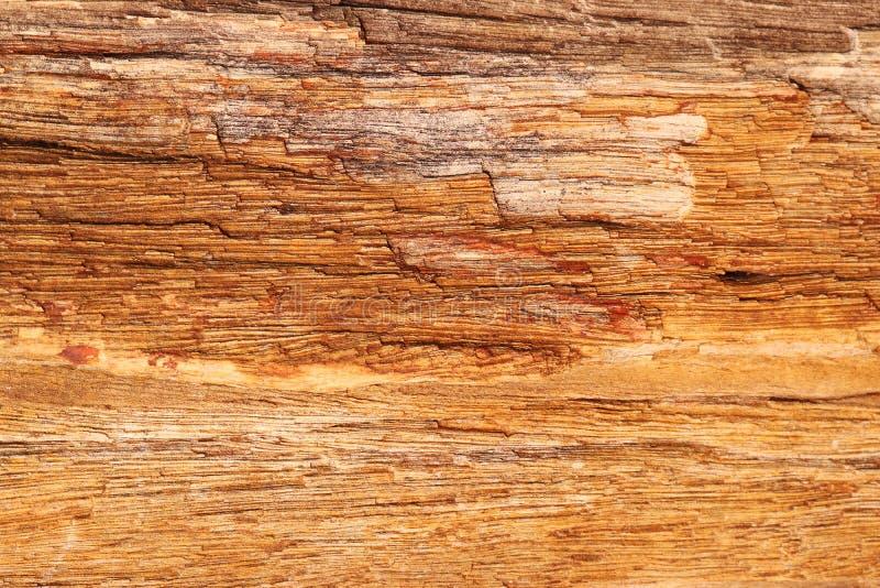 Osłupiała drewno kamienia tekstura - tło fotografia royalty free