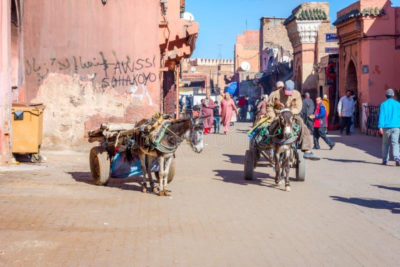 Osła fracht, Marrakech, Maroko zdjęcia royalty free