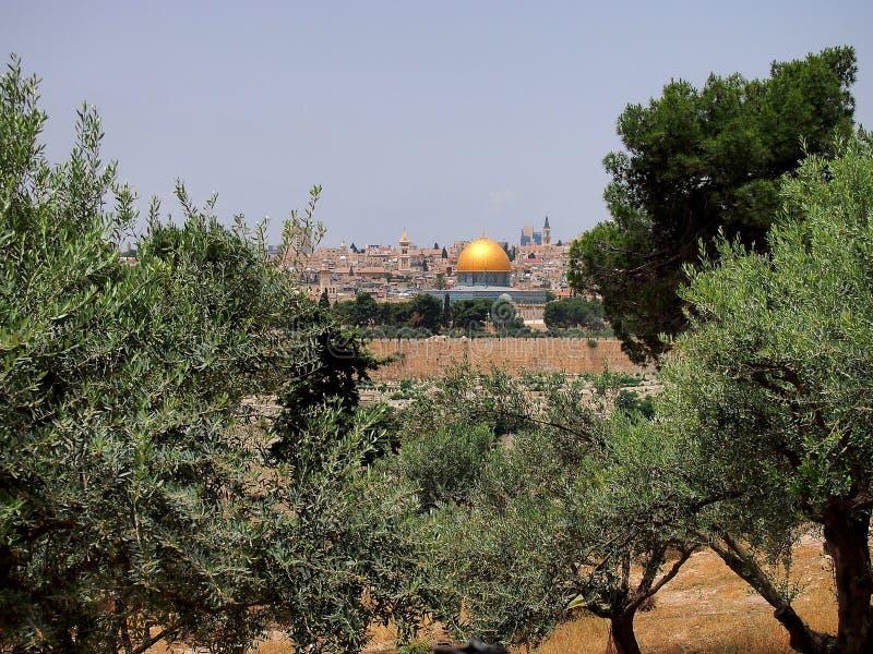 osłony Jerusalem rock fotografia royalty free