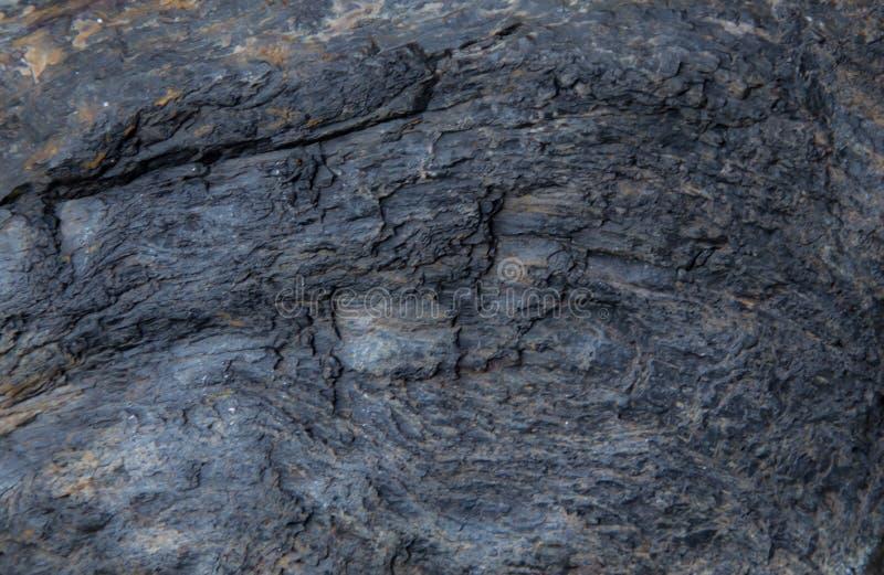 Osłupiała drewniana tekstura obraz royalty free